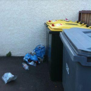 Ramassage détritus poubelle Entretien immeuble régie - syndic ACNET entreprise de nettoyage Meyzieu - Pusignan Prestation rhone, ain, isère en Rhone-Alpes