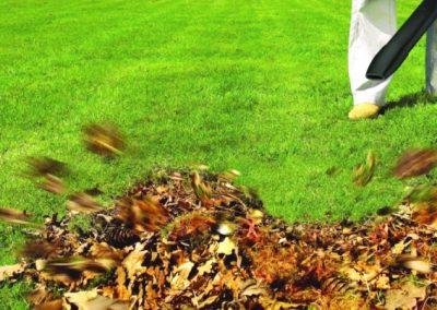 Soufflage et ramassage de feuilles mortes